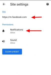 push notifications permission